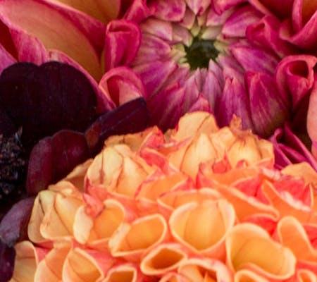 Nortons florist flower delivery birmingham florist turn a new leaf mightylinksfo