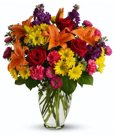 Bright eyes hoover homewood al same day flower delivery bright eyes mightylinksfo