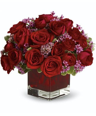 Never Let Go - 18 Red Roses