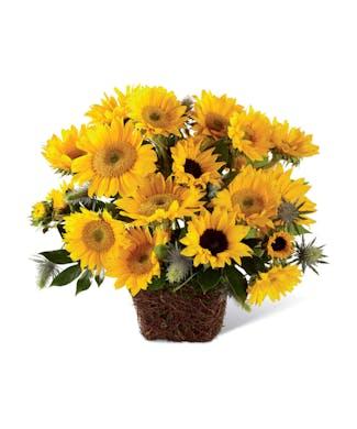 Perfect Sun Bouquet